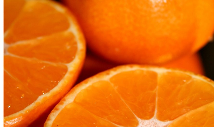 Vitamine C : l'antioxydant