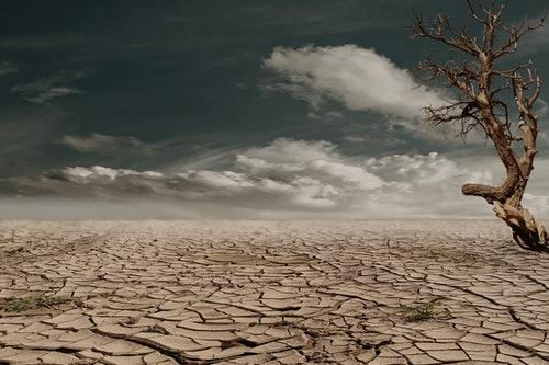 Déshydratation : cause et effet