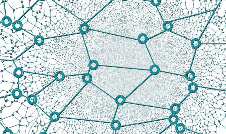 Un nouveau modèle permet de recréer l'arbre généalogique de réseaux complexes