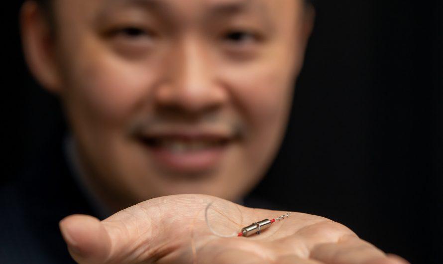 Découverte du mouvement de nage unique des spermatozoïdes des rayons démontrée avec un robot bio-inspiré