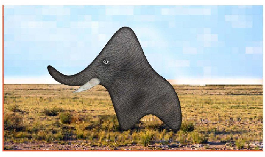Parlons de l'éléphant dans les données