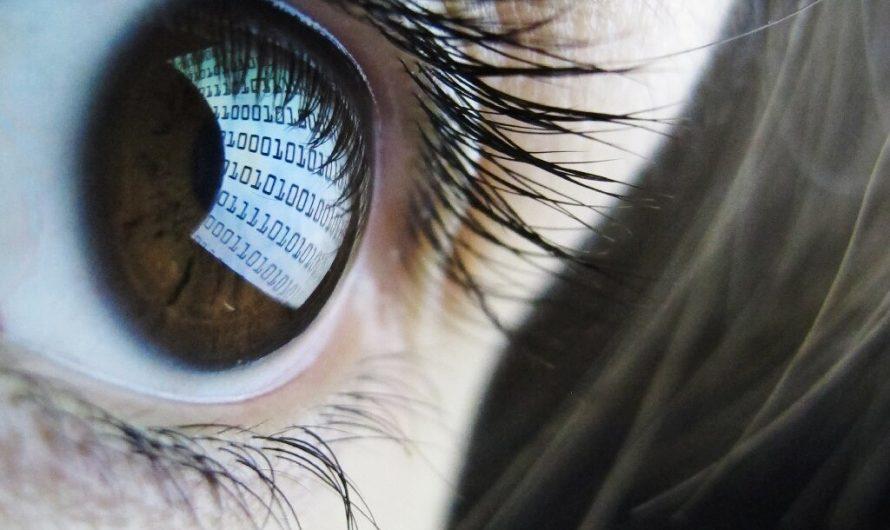 le commerce en plein essor de la technologie de surveillance